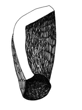 Zeichnungen - 5